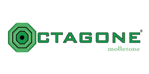 Octagone PNG
